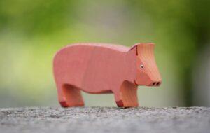 schwein-gross